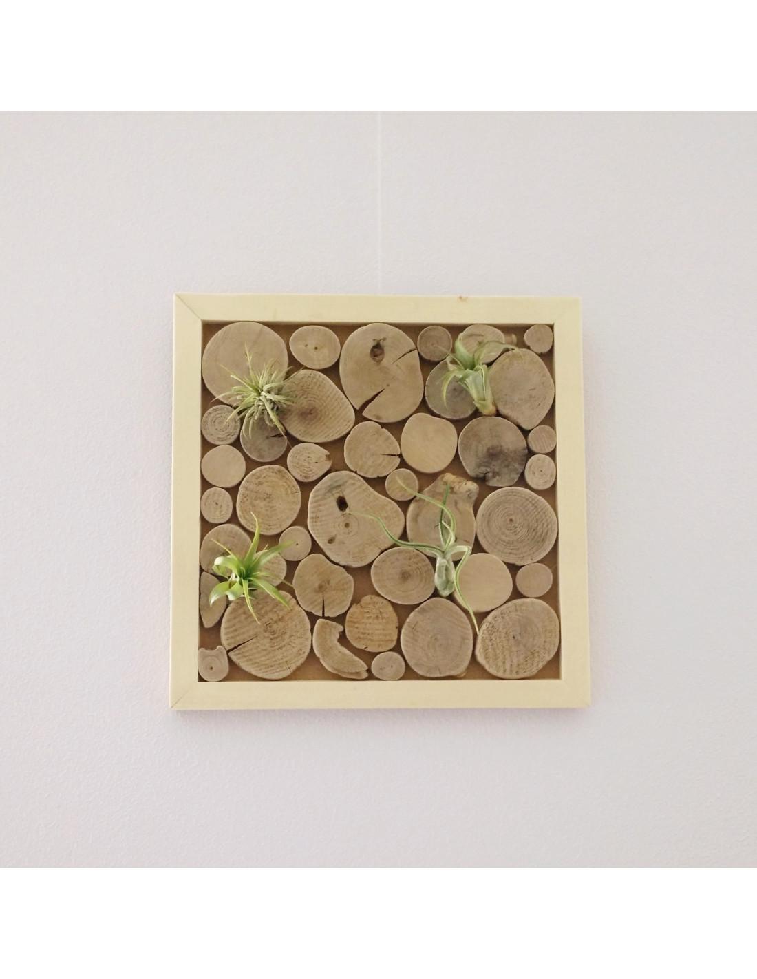wanddecoratie met luchtplantjes houten accessoires en meer