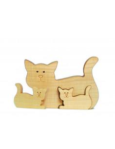 Kat met jongen