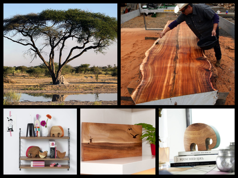 acacia hout